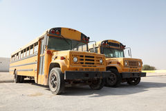 Two yellow school buses Stock Image