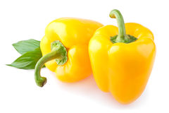 Two yellow sweet pepper Stock Images