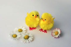 Two yellow toy chicks with daisies Stock Photos