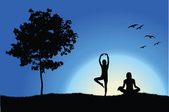 Two yoga girls on hill near tree Royalty Free Stock Photography