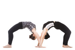 Two Yogi female partners in yoga asana dhanurasana Royalty Free Stock Image