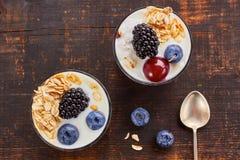 Two yogurt desserts with berries and muesli. Stock Photos