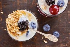 Two yogurt desserts with berries and muesli. Royalty Free Stock Photo