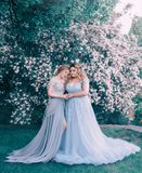 Two, young, adult women hug each other against the background of a flowering tree, a fabulous garden. Princess in Stock Image