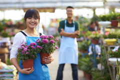 Two Young Asian Florist Working in the shop Royalty Free Stock Image