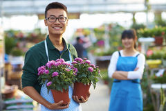 Two Young Asian Florist Working in the shop Royalty Free Stock Photography
