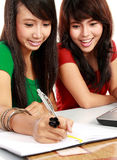 Two young asian student studying Royalty Free Stock Image