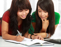 Two young asian student studying Stock Photos