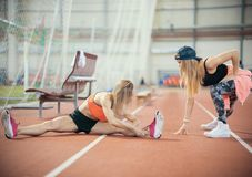 Two young athletic woman stretching and preparing to run stock photo