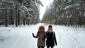 Two young and attractive women walking along the forest`s trail. And talking about something. Camera is flying in front of them stock video