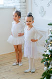 Two young ballet dancers learning the lesson near Christmas tree. Try some new pose Royalty Free Stock Images