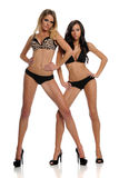 Two Young and beautiful fashion models Stock Image