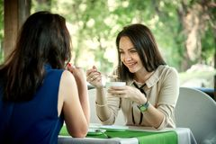 Two young beautiful girls chat. In a cafe and drink coffee stock images