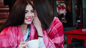 Two young and beautiful girls gossiping. On the terrace with a cup of coffee stock footage