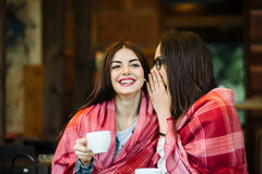 Two young and beautiful girls gossiping Royalty Free Stock Images