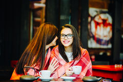 Two young and beautiful girls gossiping Royalty Free Stock Image