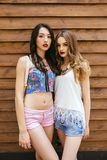 Two young beautiful girls Royalty Free Stock Photos