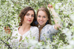 Two young beautiful ladies. Posing in blooming garden Stock Image