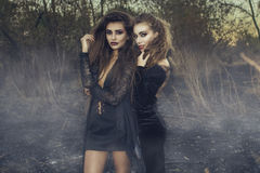 Two young beautiful sexy witches in black gowns standing in the middle of burnt meadow with predatory face expression. Stock Photography