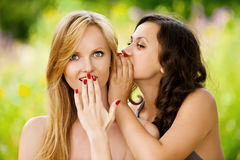 Two young beautiful women secret at Royalty Free Stock Image
