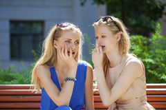 Two young beautiful women secret at summer green park Royalty Free Stock Photos
