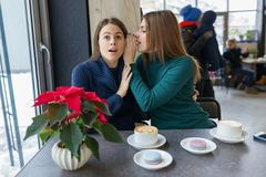 Two young beautiful women secretly sitting at a table in a coffee shop, girls whisper a secret in their ear royalty free stock images