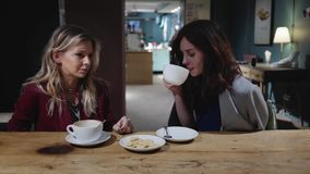 Two young attractive friends talking in a cafe, woman in business concept. Two young and beautiful women are sitting together in a cafe and talking about life or stock video footage