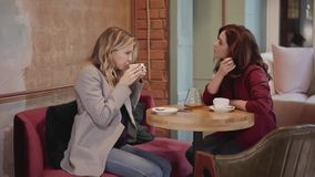 Two young beautiful friends talking in a cafe, woman in business concept. Two young and beautiful women are sitting together in a cafe and talking about life or stock footage