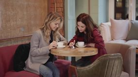 Two young attractive friends talking in a cafe, phone and photos. Two young and beautiful women are sitting together in a cafe and talking about a recent trip stock video footage