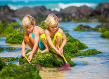 Two young boys having fun on tropcial beach Stock Photography