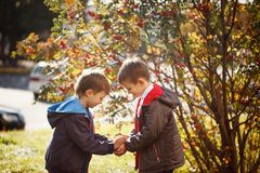 Two young boys outdoors smiling and laugh. Concept friendship. Side view Stock Photography