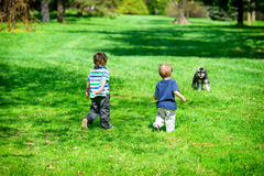 Two Young Boys at a Park Approaching a Dog Royalty Free Stock Photography