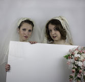 Two young brides holding blank sign Royalty Free Stock Photo