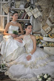 Two Young Brides Royalty Free Stock Photography