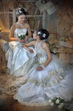 Two Young Brides Royalty Free Stock Photos