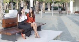 Two young businesswomen chatting outdoors stock footage