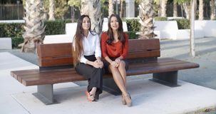 Two young businesswomen chatting outdoors. Two elegant young businesswomen sitting on a wooden bench in an urban square chatting outdoors in the sunshine stock video