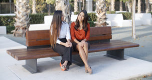 Two young businesswomen chatting outdoors Royalty Free Stock Photos