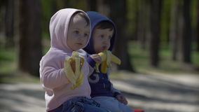 Two young children eating bananas sitting on the bench. Outdoors stock video footage