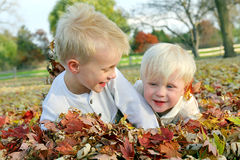 Two Young Children Playing in Fall Leaf Pile Royalty Free Stock Image