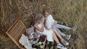 Two young children are playing in the field and eating fruit.Tips of straw in the field stock video footage