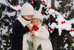 Two young children with red rose Royalty Free Stock Photography