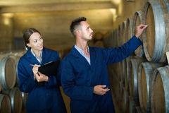 Two young colleagues expert labeling wine woods. And taking notes in big winery cellar Stock Photography