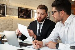 Two young concentrated bearded businessmans discussing new project, looking at document, office indoor royalty free stock photography