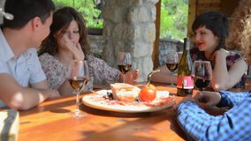 Two young couples enjoying some food and drinks stock video footage