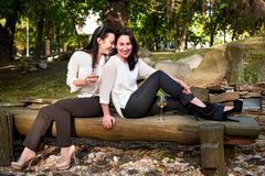 Two young cute girls sitting on logs drinking wine. And laughing Royalty Free Stock Photos