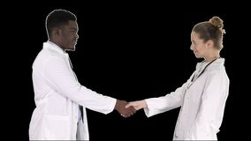 Two young doctor shaking hands, alpha channel stock video footage