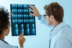 Two young doctors examining an. X-ray photograph royalty free stock photo