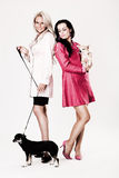 Two young fashion models with their small dogs Royalty Free Stock Image
