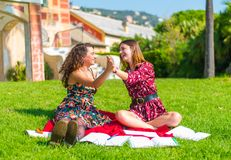 Give me a high five. Two young female friends sitting on an outside green grass park lawn, happy and studying, satisfied with their hard work and giving each royalty free stock photo